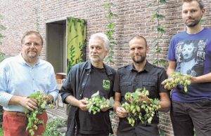 De brouwer (links) en de drie leraren uit Aalst die de hopsoorten terugvonden. Bron: Bierflash / De Streekkrant